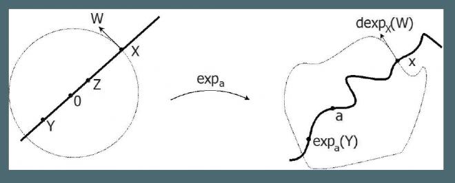 DIMENSION\ High-Dimensional Phenomena and Convexity