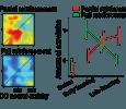 LearnAnx_CircAmyg\ Learning and Anxiety in Amygdala-based Neural Circuits